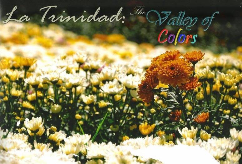 flowers of la trinidad
